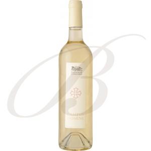 Campus Domini Blanc, Château Massamier la Mignarde (Minervois), 2014 - vin blanc