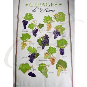 Essuie-Verres, Cepages de France