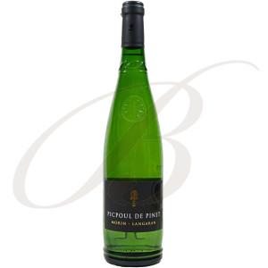 Picpoul de Pinet, Domaine Morin Langaran (Languedoc), 2018 - Vin Blanc
