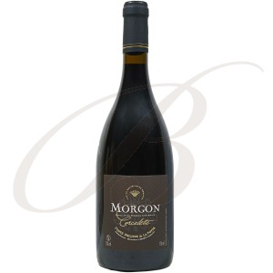 Morgon, Corcelette, Comte Philippe de la Poype, Cru Beaujolais, 2013 - red wine