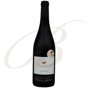 Saint-Nicolas de Bourgueil, 75cl de Terroir, La Chevallerie (Loire), 2018 - Vin Rouge