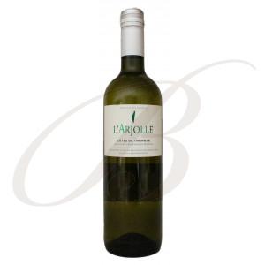 Sauvignon Blanc-Viognier, L'Arjolle (Côtes de Thongue), 2019 - Vin Blanc