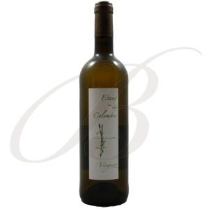 Viognier, Etang des Colombes (Languedoc), 2013 - White Wine