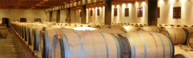 conservation cave à vin