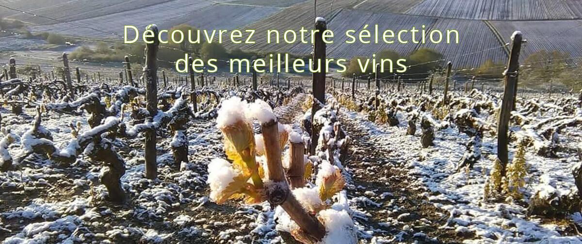 Découvrez notre sélection des meilleurs vins